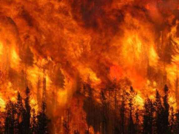 700_dettaglio2_incendio