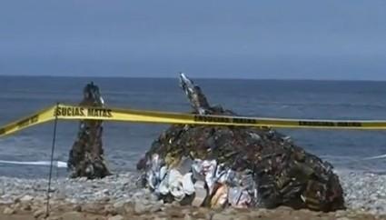 Baleine-géante-échouée-au-Pérou-425x242