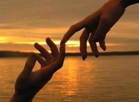 Amor-manos