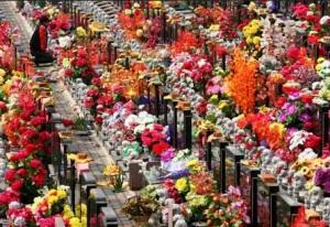 Qingming 2014 festival